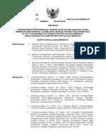 Sk Bupati (Draft) Faskap Dan Promotor