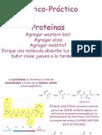 teorico proteinas 2015.pptx