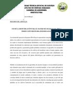 Resumen Del Paper
