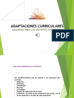 Adaptación Curricular Sugerida (1)