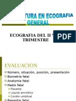 1.- ECOGRAFIA EN EL II Y III TRIMESTRE....ppt
