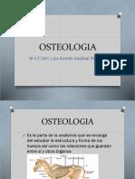 Anatomia Osteologia 1