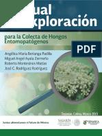 Colecta de Hongos Entomopatogenos