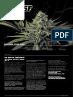 Catalogo movil bsf.pdf