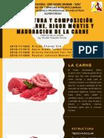 Estructura y Composicion de La Carne