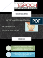 hiperplasiaprostatica-140724011054-phpapp01