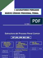287989013-Fidel-Rojas-NCPP.ppt