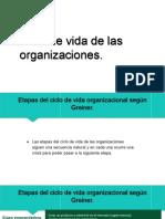 Ciclo de Vida de Las Organziaciones