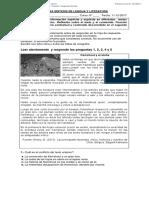 PRUEBA DE SÍNTESIS DE LENGUAJE Y COMUNICACIÓN 8° BÁSICO