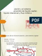 La Microcirculacion y El Sistema Linfatico
