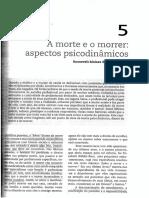 14. A MORTE E O MORRER ASPECTOS PSICODINÂMICOS.pdf