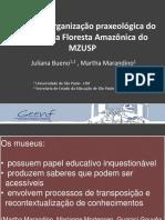 estudo da organização praxeológica do diorama da floresta