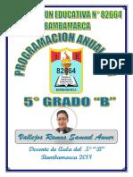 PLANIFICACIÓN ANUAL 5°- 2018