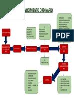 Flujograma Proceso Ordinario