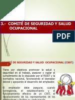 04- Comite de Seg Y Salud Ocupacional