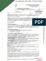 REGISTROS PUBLICOS N° 11125584 ASOCIACION INADIS