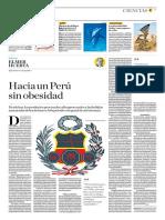 Hacia Un Perú Sin Obesidad