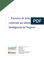 Exito en La Implantacion de Sistemas Business Intelligence 3