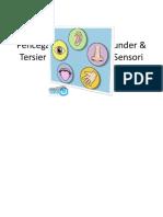 Pencegana Primer, Tersier Sekunder Sistem Persepsi Sensori