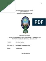 PG-IDR-039.pdf