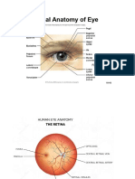 miopia degeneratif