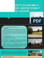 Diagnostico Economico Productivo Institucional y de Gestion