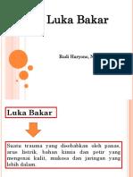 Luka Bakar