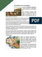 Pueblos Agrícolas de La Antigüedad
