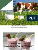 elaboracion yogurt alance de materia y energia