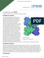 PDB-101_ Molécula Del Mes_ Hidroxilasa de Fenilalanina