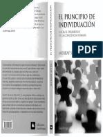 16.- Stein, Murray Proceso de Individuación