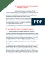 Conclusiones Del Pleno Jurisdiccional Nacional Laboral y Procesal Laboral