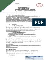 MPA AUDITORÍA IMPOSITIVA AGENCIA ANDALUZ.docx