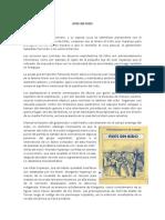 Analisis Literario de Ave Sin Nido y Edipo Rey