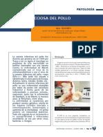 4074-anemia-infecciosa-del-pollo.pdf