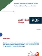 AMEF y Gestion Del Riesgo