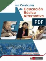 Programa_curricular_Inicial_Intermedio_EBA-convertido.docx