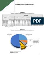 ANEXO 3 Estadistica de Empresarios