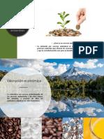 Desarrollo u.4 ambiental