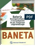 Baneta Manual