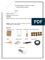 354910373-Informe-de-Pila-Con-Monedas.docx