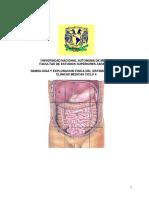Semiología y Exploración Física Del Sistema Digestivo. Clínicas Médicas Ciclo II (1)