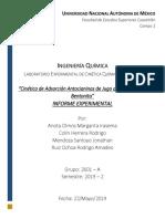 Reporte 9 Cinetica de Adsorción de antocianinas