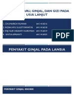 14. Kelompok 2_penyakit Paru, Ginjal, Dan Gizi Pada Lansia Edited