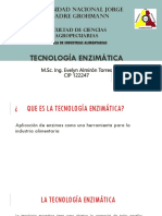Clase 4 Tecnología Enzimática
