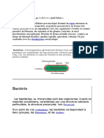 bacter_doc - def+image