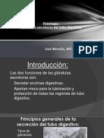 Funciones Secretoras Del Tubo Digestivo.pptx