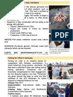 Fisheries Best Practises