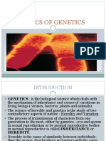 Basics of Genetics