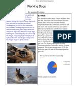 antonio contrino - copy of feature article design template